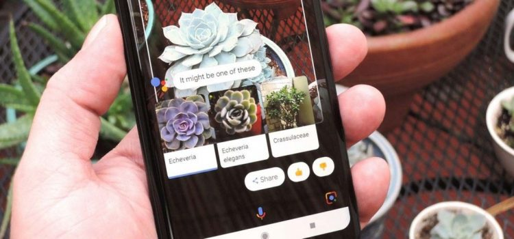 Google Lens sur mobile