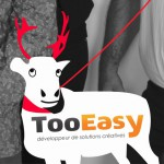 fetes-fin-d-annee-2016_Agence_TooEasy-min