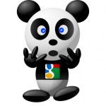 google-panda-filtre-referencement